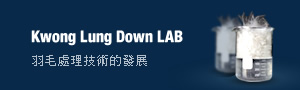 KL DOWN LAB